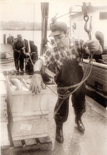 unloading fish
