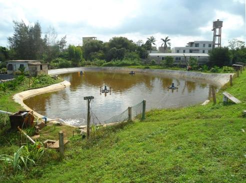 fish_farm_in_hainan_-_01