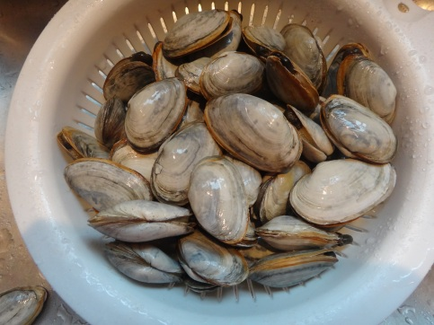 Essex Clams