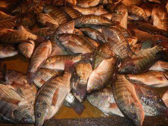 09828jfBulakan,_Bulacan_Public_Market_Foodsfvf_14