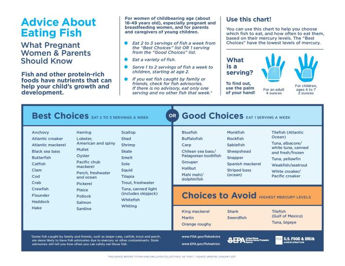 fda seafood guidelines