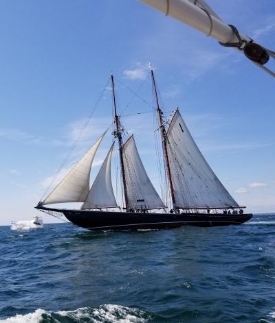 schooner bluenose