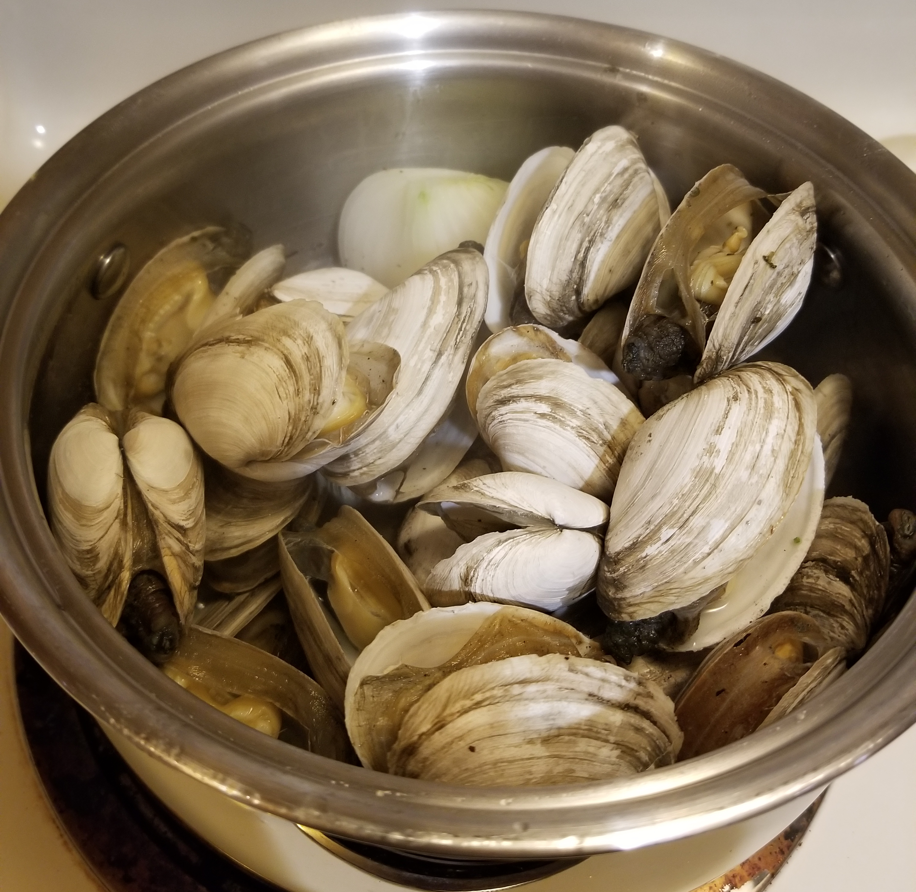 steamed clams in wine
